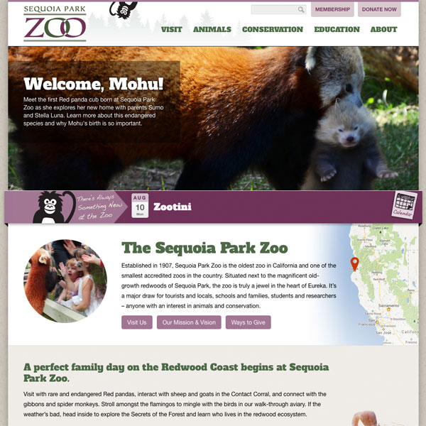 Eureka zoo web design